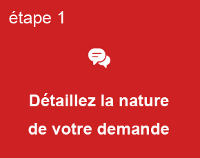 Etape 1, détaillez la nature de votre demande